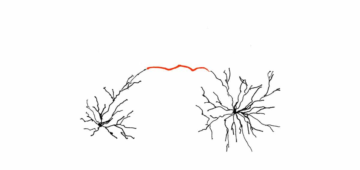 Zwangsgedanken loswerden – rot: synaptisch nur ein einziges Muster stark vernetzt (stark vereinfachte Darstellung)